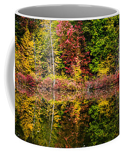 Autumn At Mendon Ponds  Coffee Mug by Sara Frank