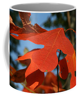 Autumn Attention Coffee Mug by Neal Eslinger