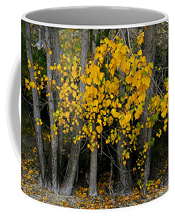 Autumn Breakout Coffee Mug