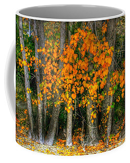 Autumn Breakout No.2 Coffee Mug