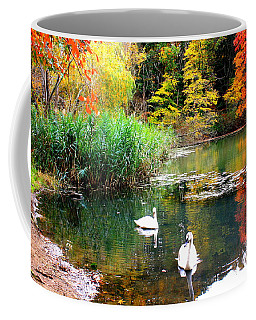 Autumn By The Swan Lake Coffee Mug by Dora Sofia Caputo Photographic Art and Design