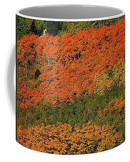 Autumn Color At The Continental Divide 2 Coffee Mug