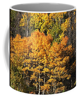 Autumn Color At The Continental Divide Coffee Mug by Kae Cheatham