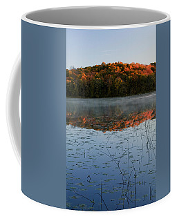 Autumn Color Forest Reflected In Grass Coffee Mug