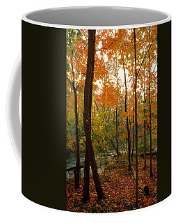 Autumn Colors Coffee Mug