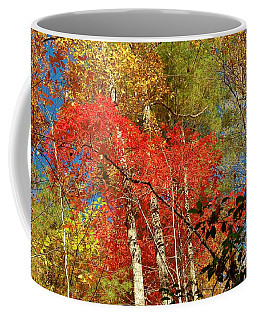 Autumn Colors Coffee Mug by Patrick Shupert