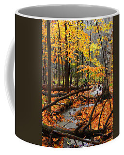 Coffee Mug featuring the photograph Autumn Creek In The Rain by Rodney Lee Williams