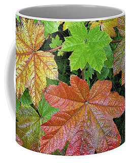 Autumn Devil's Club Coffee Mug by Cathy Mahnke