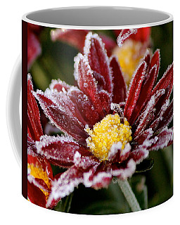 Autumn Frost Coffee Mug by Tiffany Erdman