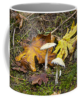 Coffee Mug featuring the photograph Autumn Fungi by Sean Griffin