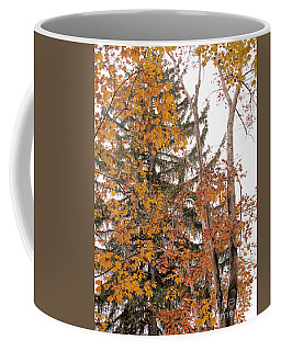 Autumn Gold Coffee Mug by Sandy McIntire