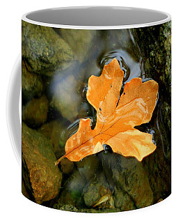 Coffee Mug featuring the photograph Autumn Gold by Viviana  Nadowski
