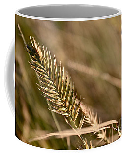Autumn Grasses Coffee Mug by Linda Bianic