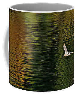 Coffee Mug featuring the photograph Autumn Gull by Sean Griffin