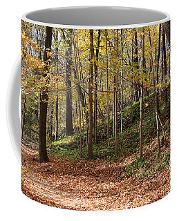 Autumn In Grant Park 4 Coffee Mug