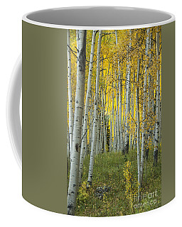 Autumn In The Aspen Grove Coffee Mug