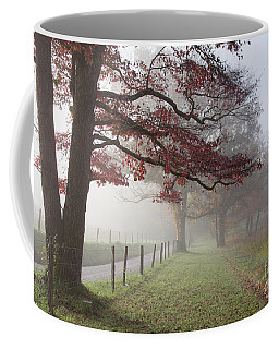 Autumn In The Cove IIi Coffee Mug by Douglas Stucky