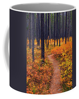 Autumn In Yellowstone Coffee Mug