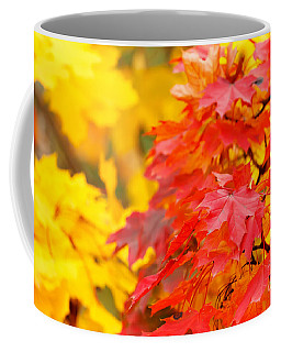 Autumn Is Beautiful Coffee Mug