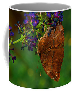 Coffee Mug featuring the photograph Autumn Leaf Butterfly by Tam Ryan