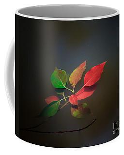 Autumn Leaves Floating Coffee Mug