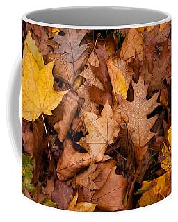Coffee Mug featuring the photograph Autumn Leaves by Matt Malloy