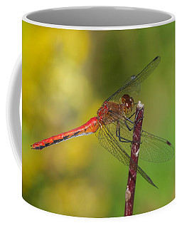 Autumn Meadowhawk Coffee Mug