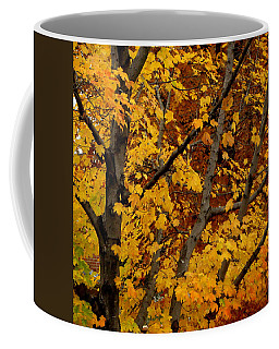 Autumn Moods 21 Coffee Mug