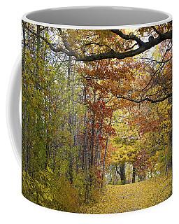 Autumn Nature Trail Coffee Mug