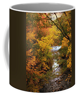 Coffee Mug featuring the photograph Autumn On Display by Jessica Jenney