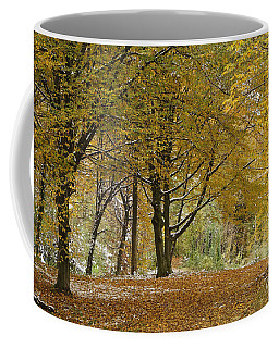 autumn on Moenchsberg in Salzburg Coffee Mug by Rudi Prott