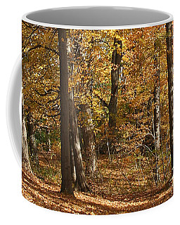 Coffee Mug featuring the photograph Autumn Path by William Selander