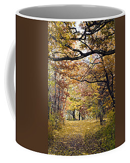 Autumn Pedestrian Path Coffee Mug