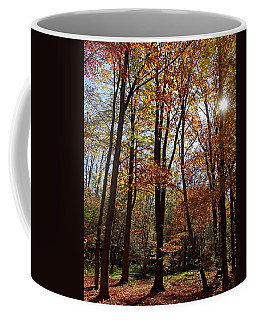 Coffee Mug featuring the photograph Autumn Picnic by Debbie Oppermann