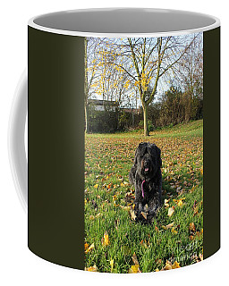 Coffee Mug featuring the photograph Autumn Portrait by Vicki Spindler