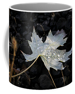 Autumn Rain Coffee Mug by Katie Wing Vigil