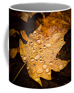 Autumn Rain Coffee Mug by Sara Frank