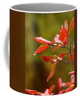 Autumn Raindrop Coffee Mug