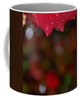 Coffee Mug featuring the photograph Autumn Rhapsody by Marija Djedovic