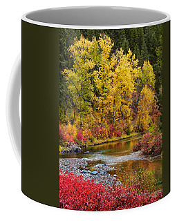 Coffee Mug featuring the photograph Autumn River by Mary Jo Allen