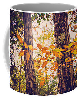 Autumn Spirit Coffee Mug by Sara Frank