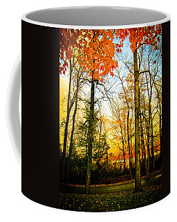 Autumn Sunset  Coffee Mug by Sara Frank