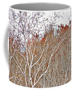 Autumn Sycamores Coffee Mug