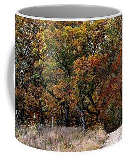 Autumn Trail 2 Coffee Mug