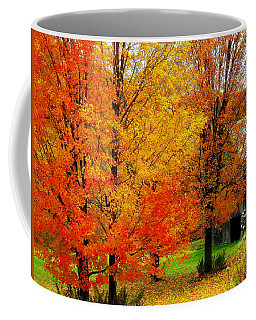 Coffee Mug featuring the photograph Autumn Trees By Barn by Rodney Lee Williams