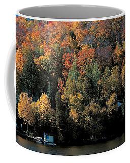 Autumn Trees Laurentide Quebec Canada Coffee Mug