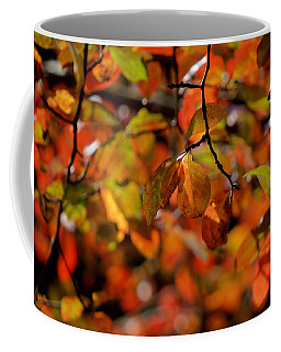 Autumn's Firey Show Coffee Mug