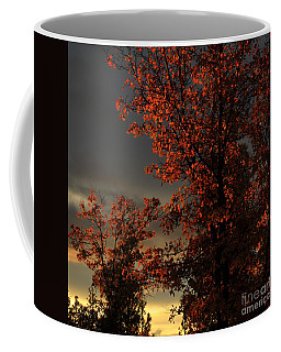 Autumn's First Light Coffee Mug by James Eddy
