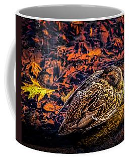 Autumns Sleepy Duck Coffee Mug