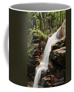 Avalanche Falls Coffee Mug